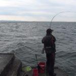 【動画更新】釣りの動画を1本、本日公開しました。久里浜沖でマダイ・黒鯛を狙う!