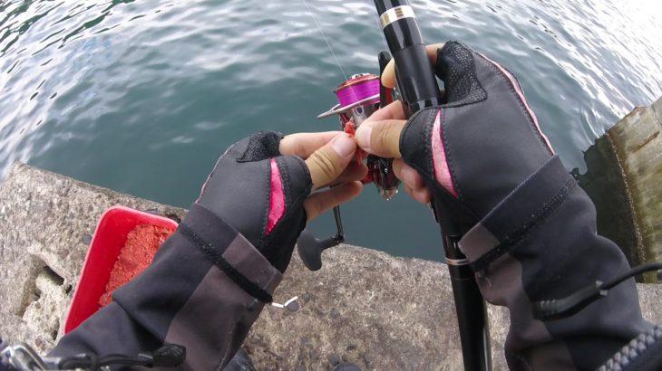 江之浦漁港でウキフカセ釣り調査してきた!マルキユーアミパワーグレの効果はいかに・・?2020.10.05