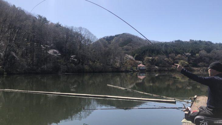 2か月ぶり?の円良田湖で父とヘラブナ釣り