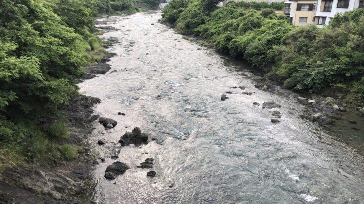 2021年シーズン初の鮎釣り!初の興津川に行ってきたよ!