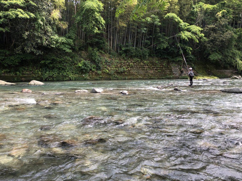 興津川 鮎釣り